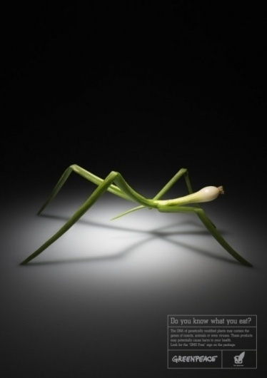 Greenpeace by Tanya Moseeva » Creative Photography Blog #creative #photography #advertising