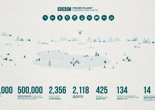 BBC Frozen Planet - Illustration (Personal) on the Behance Network #infographic #design #graphic