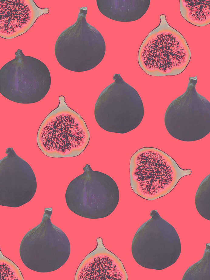 Fig, Figs, Patter