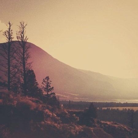 Tumblr #photography #colour #nature
