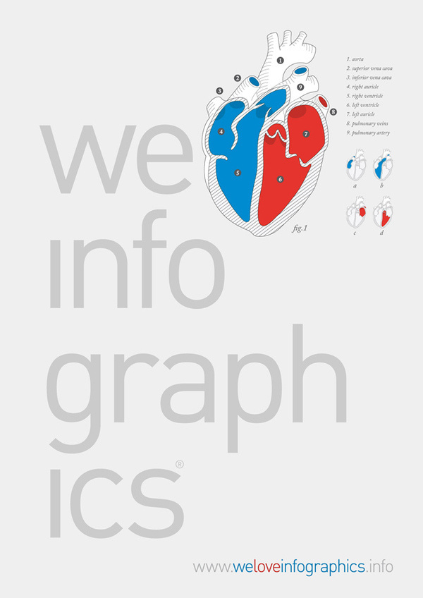 We Love Infographics by Ernesto Lago #creative #infographics #design #datavis #illustration #ernesto #lago #science