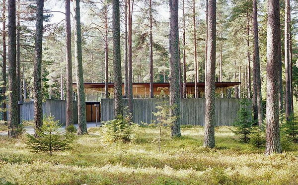 woods #forest #architecture #woods