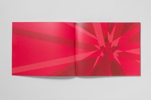 Ben Hulse #branding #guide #guidelines #athletics #style