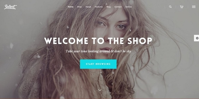 Make your wordpress site more sophisticated with Salient Responsive Design Theme.