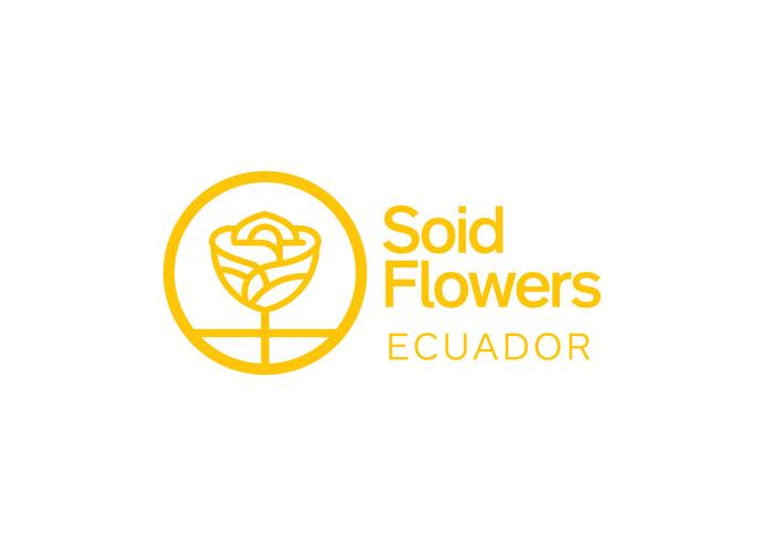 logo, logotype, identity, flowers, roses