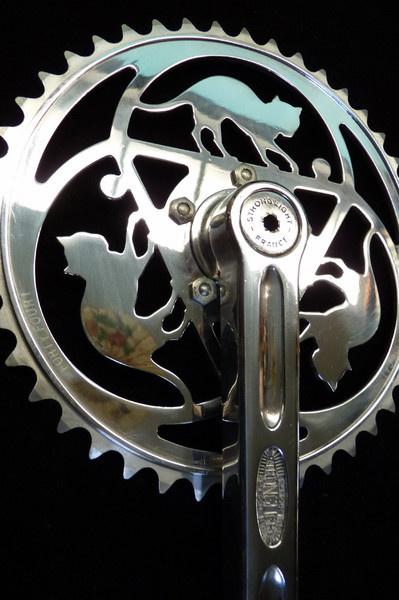 #cat #bike #bicycle #chainwheel #cycling