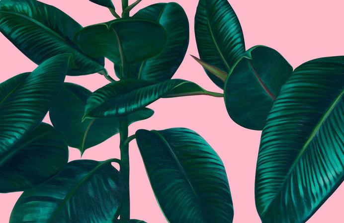 Buamai - Tallinn Music Week 2014 By Aku #pink #pattern #plant #green