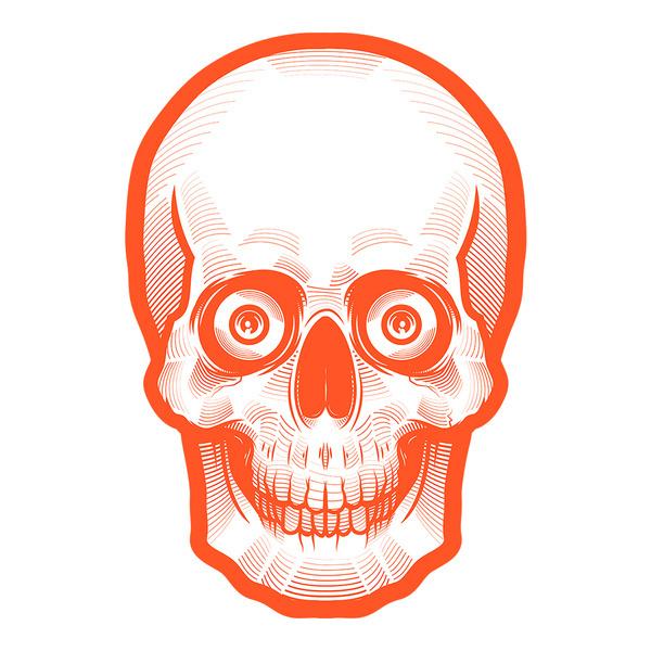 Orange Skull by Musketon #creepy #skeleton #orange #illustration #skull