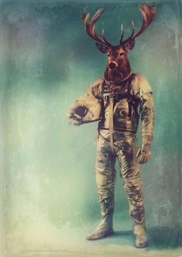 776QP.jpg (400×566) #astronaut #deer