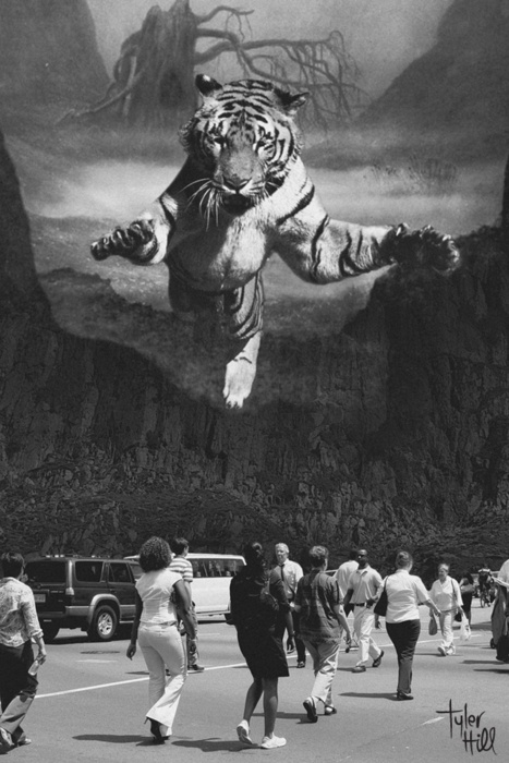 Do you Like this artwork? #illustration #tiger
