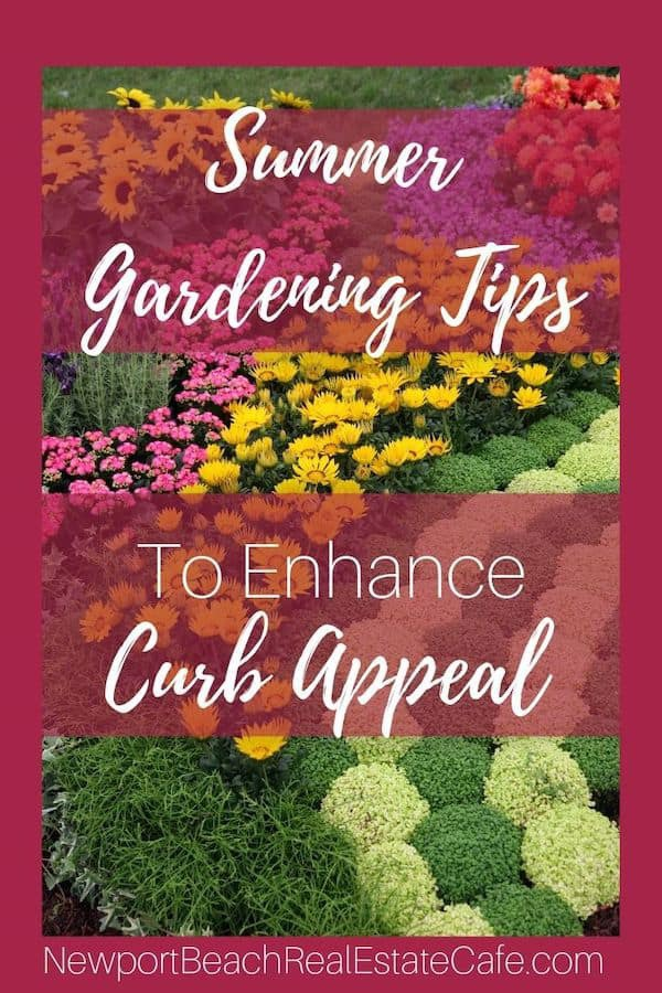 Summer Gardening tips to improve curb appeal