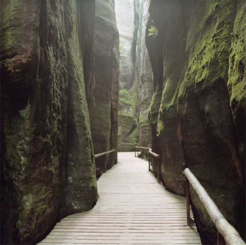 Drop Anchors #crevasse #path #cliff #chasm #photography #valley #moss