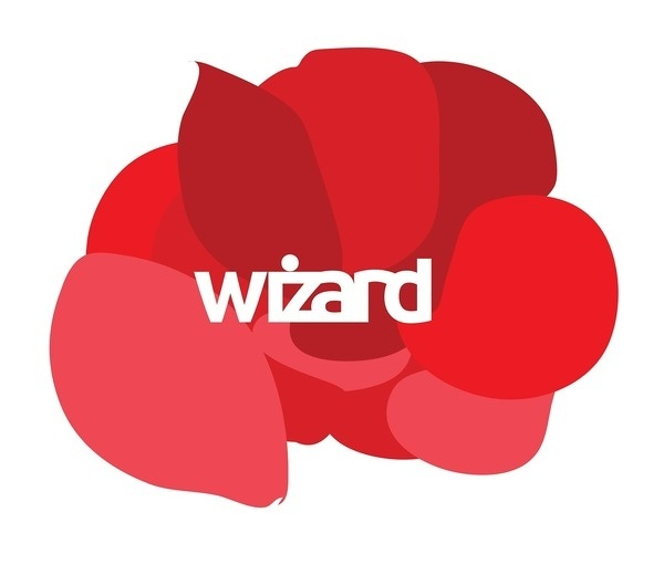 wizard #red #branding #africa #design #graphic #south #corporate #kimberley #identity #kate #logo #wizard #typography