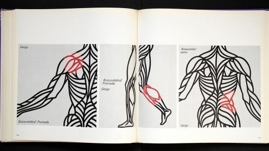 3541823038_278fda5ba6_b.jpg (1024×577) #swiss #muscles #design #books #body