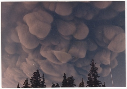 Augustine ash cloud | Flickr - Photo Sharing! #photography #ash #volcano #cloud