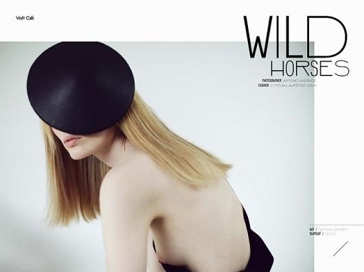 wild horses | Volt Café | by Volt Magazine #beauty #design #graphic #volt #photography #art #fashion #layout #magazine #typography