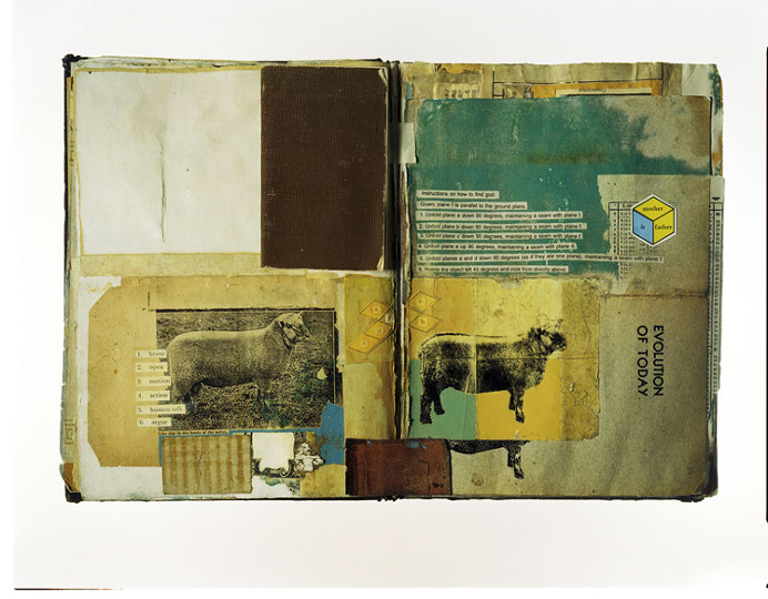 collage, worn, texture, mixed, vintage, weathered