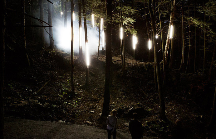 moment factory enchanted forest #light