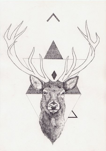 Art & Science Journal | Illustration and Graphics #inspiration #deer #illustration #art #science