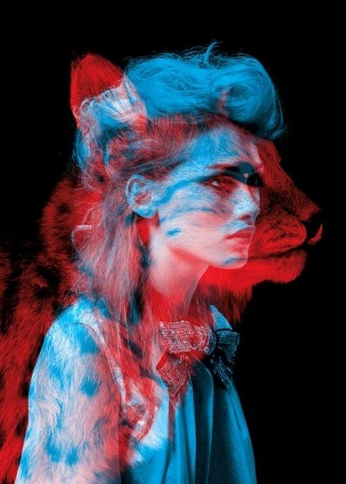 - bêtes de mode : HELMO #portrait #animal #two #colour