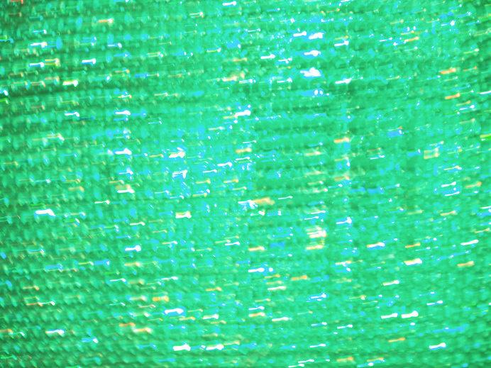 Green #photography #beginner #amateur