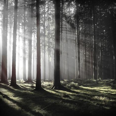 Фотограф Jürgen Heckel #nature #photography #landscape