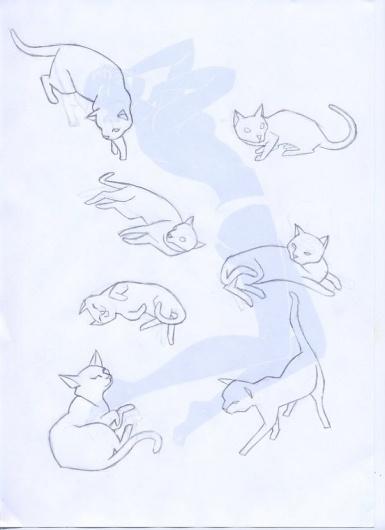 Desarrollo de una ilustración. Illo Developement. #illustration #luis #agreda #jose
