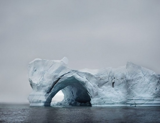 Google Reader (148) #ice