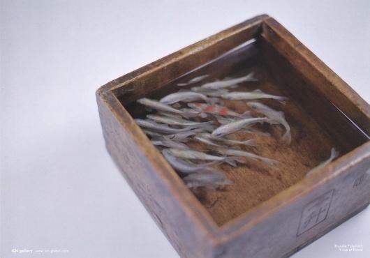 All sizes | Exhibition Flyer Featuring #riusuke #goldfish #salvation #fish #fukahori #icn
