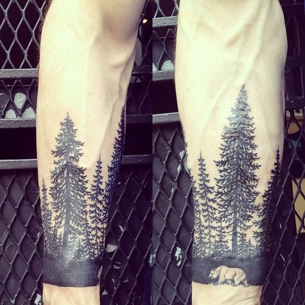 Pinned Image #bear #trees #pine
