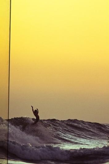 http://thesealife.com.au/home.aspx #photo #yellow #surf