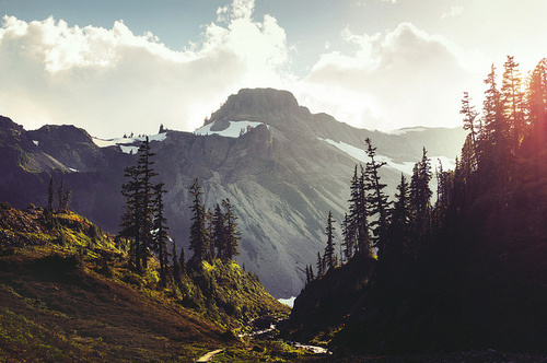 Mountains and trees #photography #mountains #landscape