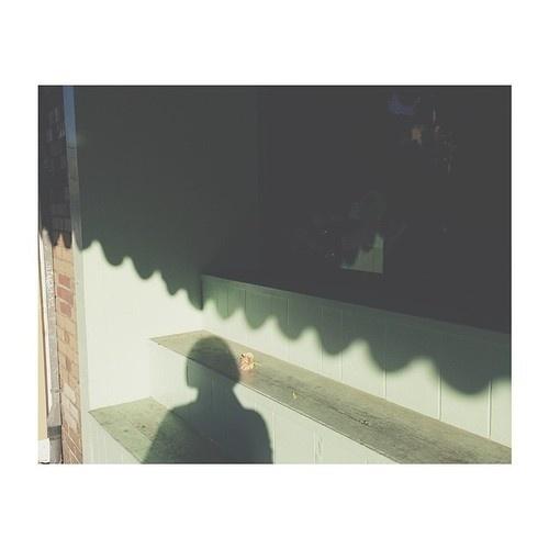 Cortney Cassidy #shadows