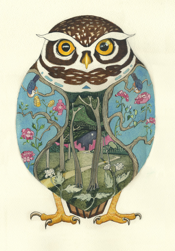 Image of Little Owl Print #illustration #colour #water #owl