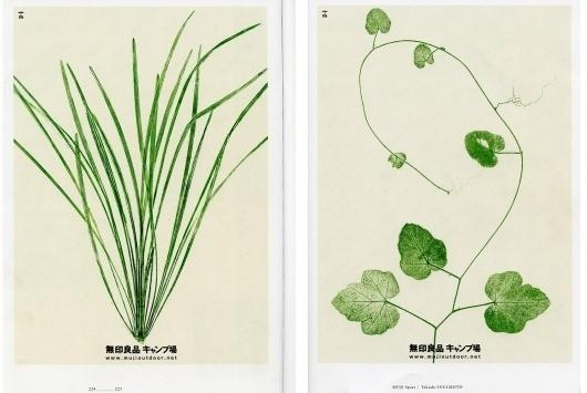 poster3.jpg 1600 × 1074 pixels #leaf #nature #poster #muji #plant
