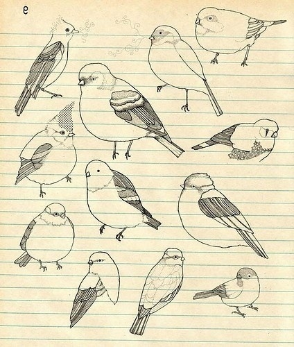 Birds picture on VisualizeUs #birds #drawing #sketchbook