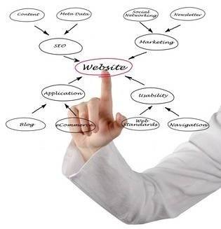 Web Design Basics #design #web #basics #company