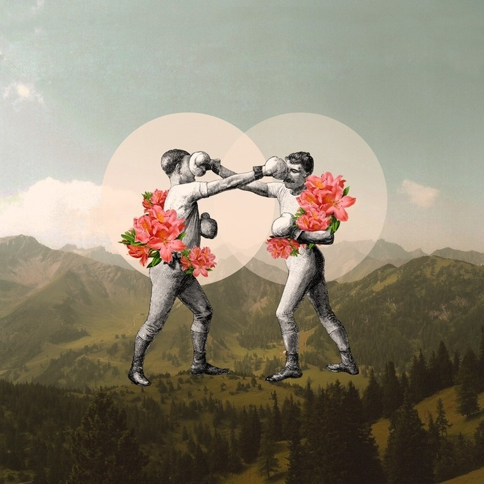 Foes before hoes. #collage #abstract #vintage #illustration #humor