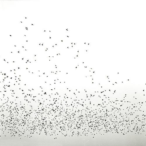 texturism: untitled byleo tage hansen| viamedformat #pattern