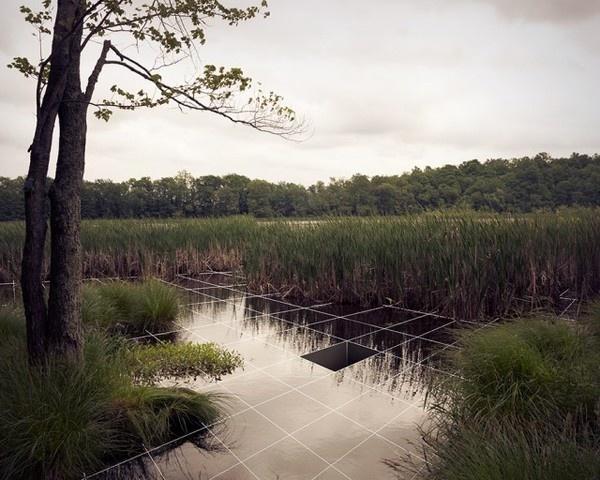 http://www.fubiz.net/wp content/uploads/2012/09/Nature Scientific Interpretation8 640x512.jpg #design #photography #3d