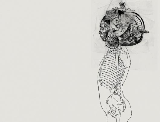tumblr_lz154ycaN11qz9v0to1_1280.jpg (JPEG Image, 1000×763 pixels) #deformed #skeleton #diagram #head #scientific #illustration #lau #dio