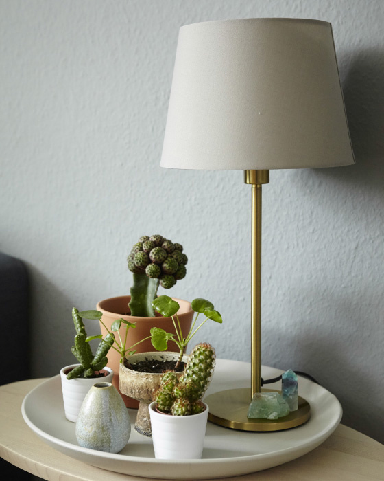 Home furnishing with cactus plants and RODD brass colour table lamp base @ Igor's on www.happyinteriorblog.com