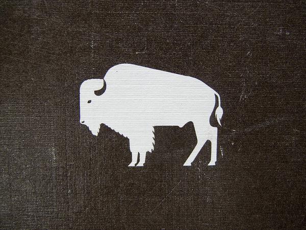 photo #buffalo