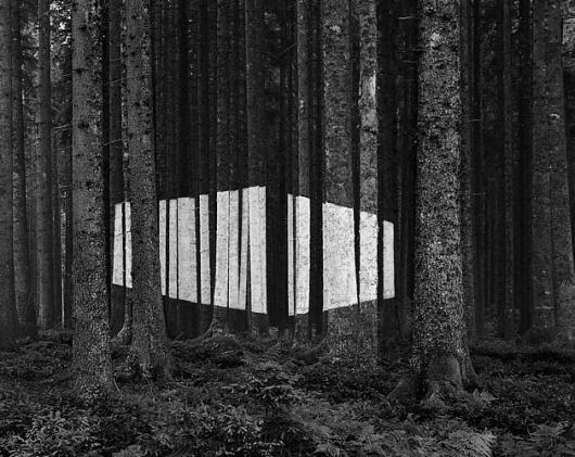 Buamai - Jan Imberi #photography #nature