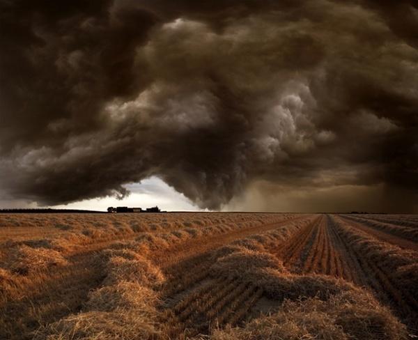Harvest Time #nature #photography #landscape