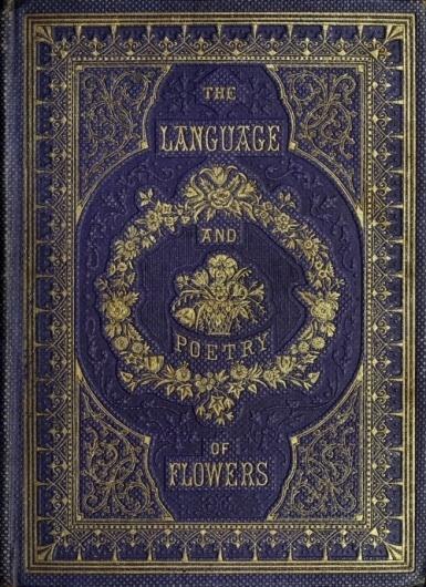 coqueterías #cover #book