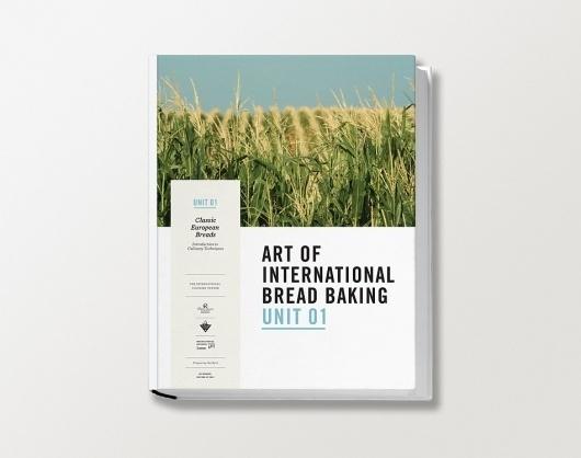BookCover_02_1000.jpg 950×750 pixels #cover #book