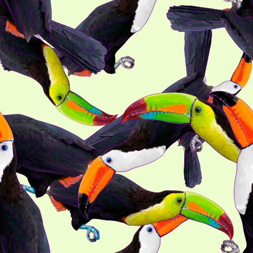 Toucan #tpucan #pattern #tropical