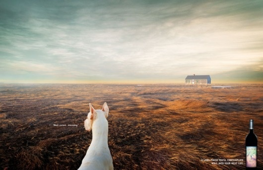 Advertising Photography by Guy Seese » Creative Photography Blog #inspiration #photography #advertising