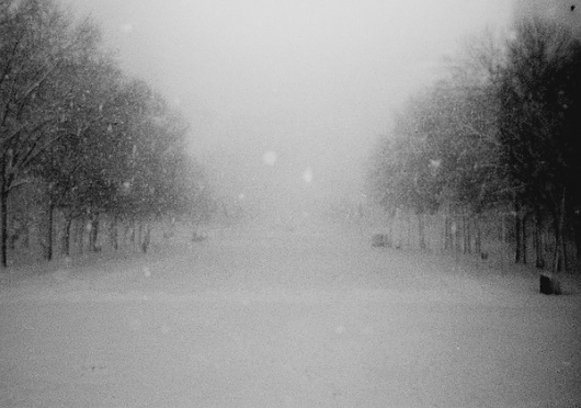 Snowpocalypse: Now : H/34 : Creative Work, By Alex Koplin #white #snow #black #photography #and